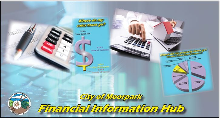 Financial Information Hub